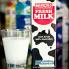 100% Fresh Milk - Plain